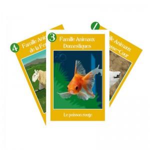 jeu-7-familles-personnalisable-animaux-de-nos-campagnes-1417682146
